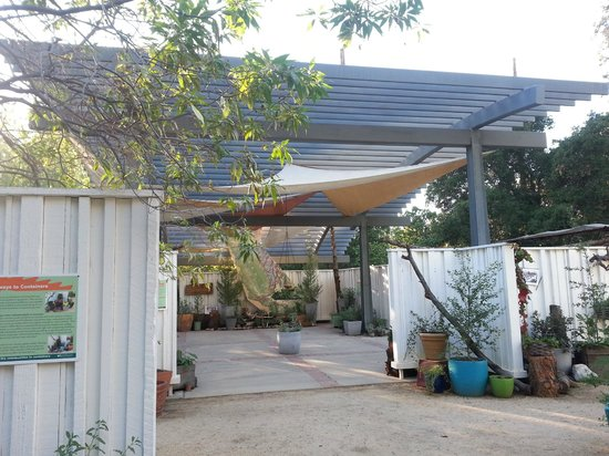 Rancho Santa Ana Botanic Garden: Container Garden