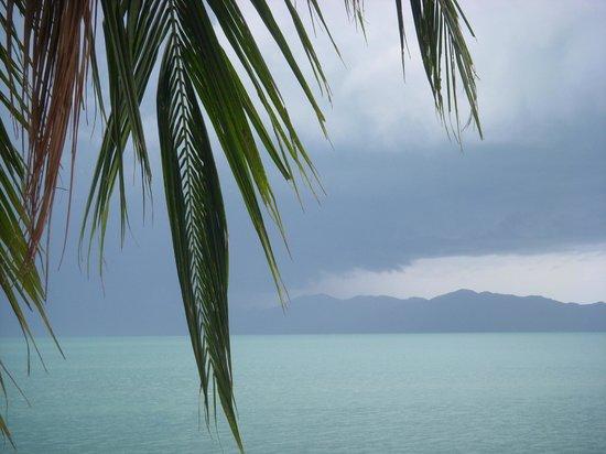 Florist Resort: Seaview из нашего номера