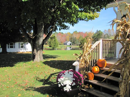 Eden Village Motel and Cottages: dintorni