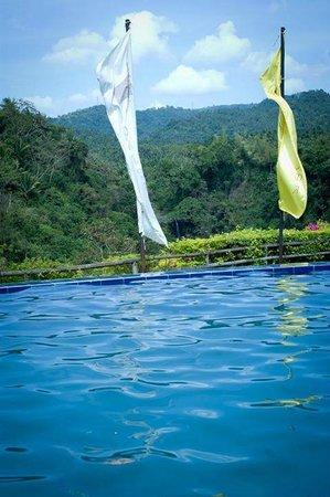Amansinaya Mountain Resort: Pool