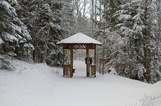 Adirondack Interpretive Center: The AIC and its trails are open year round. Snowshoes rentals available.