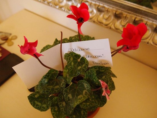 Hotel Marconi: Welcome flowers