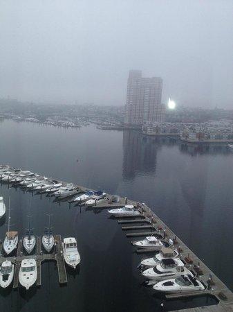 Four Seasons Baltimore: foggy morning