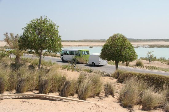 Anantara Desert Islands Resort & Spa: Transport between the jetty and resort