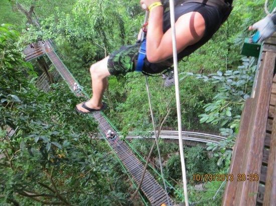 Rainforest Adventures: zip line section 3