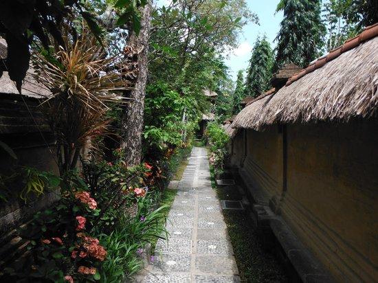 Bali Agung Village: uitzicht vanaf de veranda