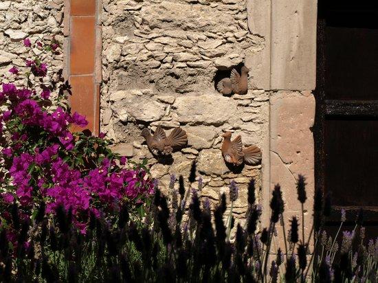 Hotel Casa Mexicana: jardines muy bonitos y muy mexicanos