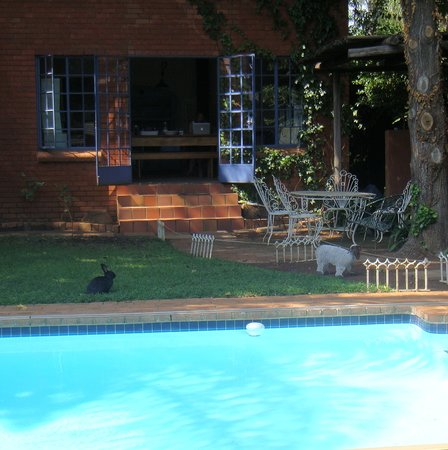 Friends Accommodation Services: swimmingpool