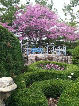 Allen Centennial Gardens Spring 2013