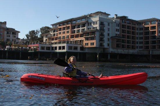 Monterey Plaza Hotel & Spa : Overlooking Monterey Bay