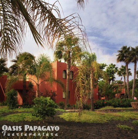 Oasis Papagayo Sport & Family: apartments closest to pool