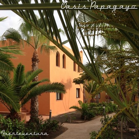 Oasis Papagayo Sport & Family: apartments further from the pool