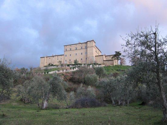 Castello di Potentino: From the vines