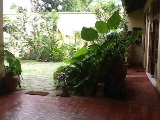 Mount Lavinia House : Front Drive