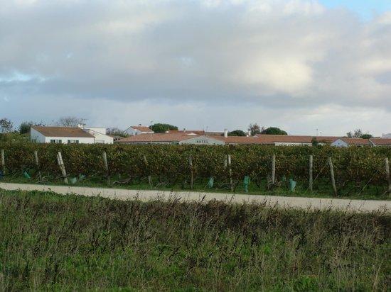 Les Vignes de la Chapelle: environs