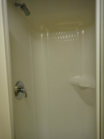 Hotel Laurier : Shower