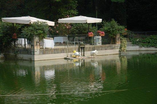Fontanafredda: Il laghetto - particolare