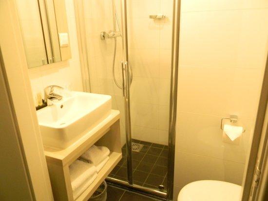Hotel Apple Inn: Baño