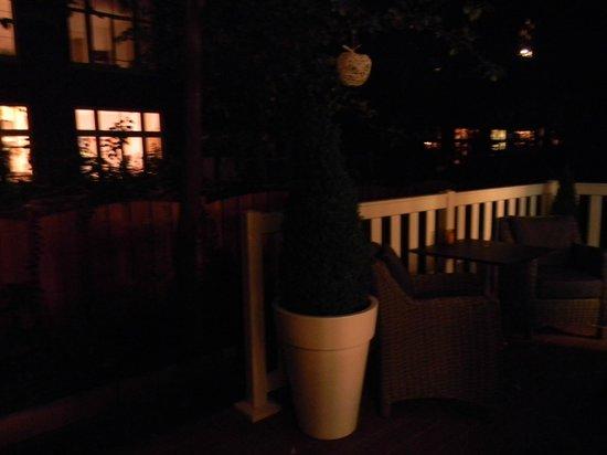 Hotel Apple Inn: Jardin
