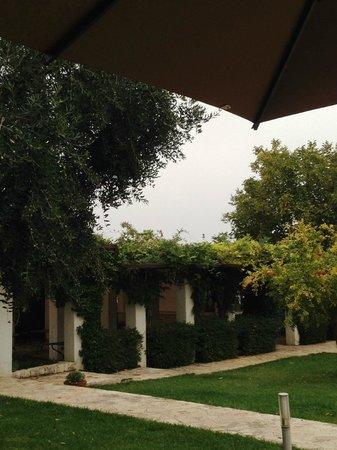 Abate Masseria & Resort : uno scorcio del parco