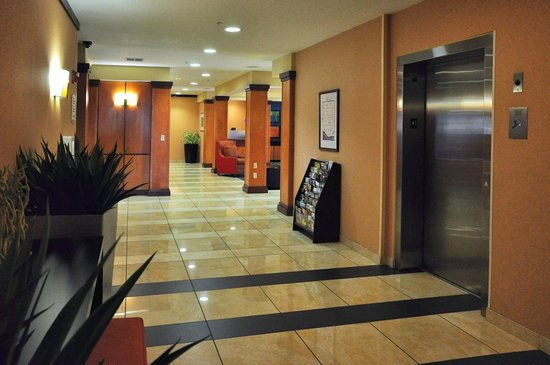 Fairfield Inn & Suites Muskogee: Public areas are visually appealing and clean.