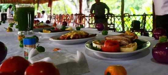 Cenote Zaci: Platillos de nuestra cocina.