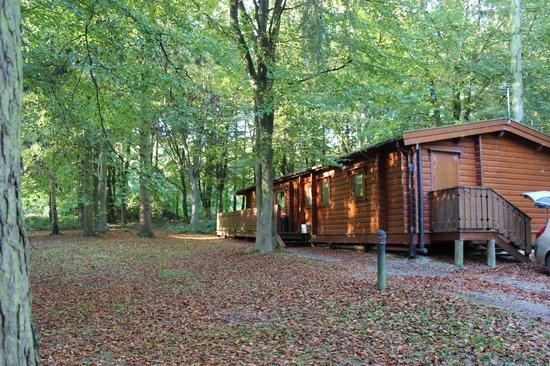 BEST WESTERN PLUS Kenwick Park Hotel: Lodges have plenty of space