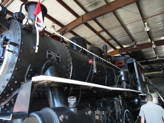 Waterloo Central Railway: Steam Train