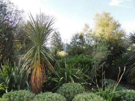 Hanmer Springs Thermal Pools & Spa : landscaping