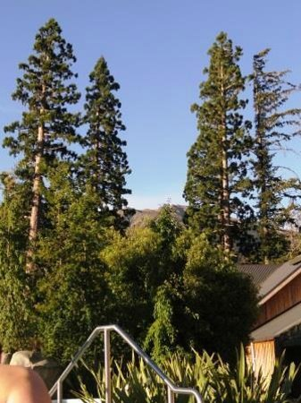 Hanmer Springs Thermal Pools & Spa : trees and mountain
