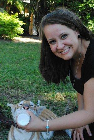 Zoological Wildlife Foundation: Feeding a baby tiger!