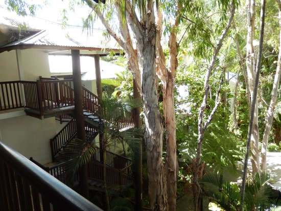 The Reef Retreat Palm Cove: as i said a tree house experience