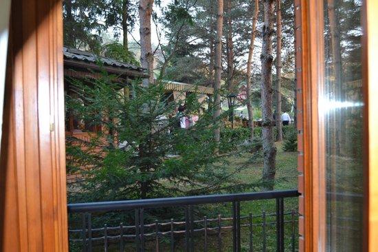 Zolota Gora Hotel-Rancho: Вид из номера