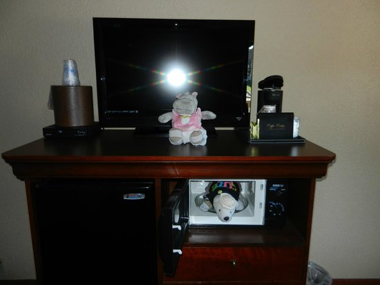 BEST WESTERN Plus Landing View Inn & Suites: Flat screen, coffee maker, fridge and microwave