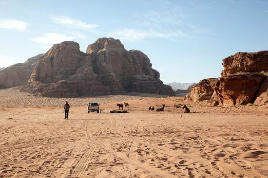 Jordan Tracks : Horse Riding, A Morning at the Camp
