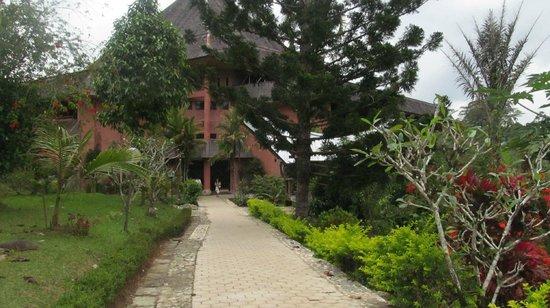Toraja Heritage Hotel: Hotel grounds