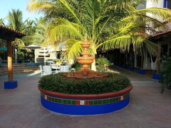 Hacienda Paraiso de La Paz Bed and Breakfast/Inn: Courtyard oasis at hacienda Paraiso