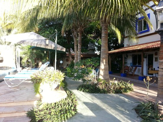 Hacienda Paraiso de La Paz Bed and Breakfast/Inn : Courtyard, pool and apartments