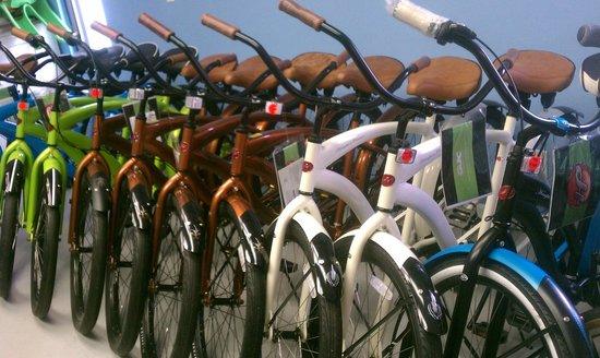 Coastal Cruisers: bikes of every kind !