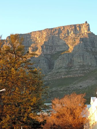 The Cape Cadogan: View of table mountain