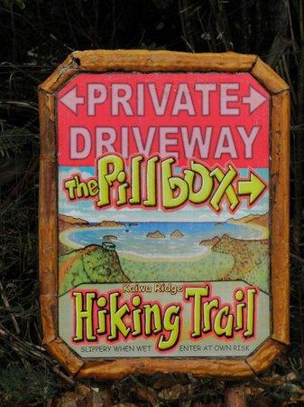 The Hula Breeze: start of Pillbox hike