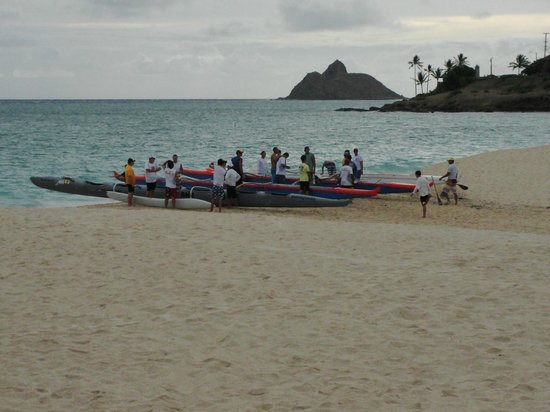 The Hula Breeze : outriggers at Kailua beach park - ready to race