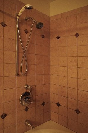 Master Bathroom shower fixtures. - Picture of The Pinnacle ...