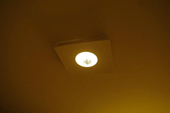 The Pinnacle Condominiums: Dead cluster flies in master bathroom exhaust ceiling fixture.