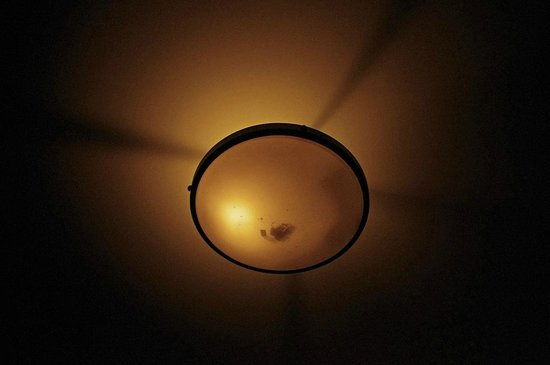The Pinnacle Condominiums: Dead cluster flies in ceiling fixture.