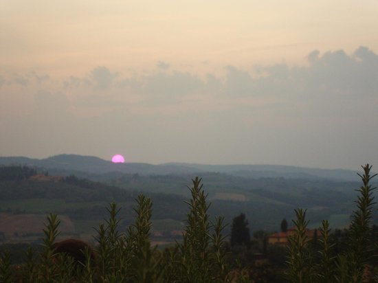 Podere il Pino : Evening