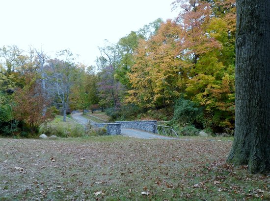 Sunnyside: grounds in the fall