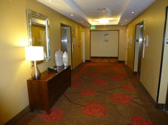 Hilton Garden Inn Panama: zona de ascensores piso 11