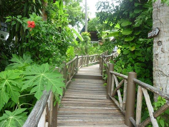 Marina Phuket Resort: Lush tropical gardens
