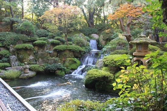 Shiraishiya: お庭